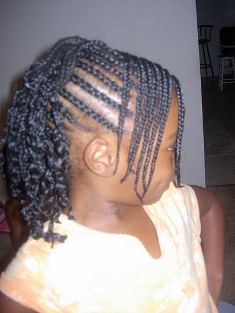 Black Girl Braid Hairstyles