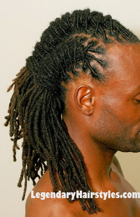 Dreadlocks braided hairstyles
