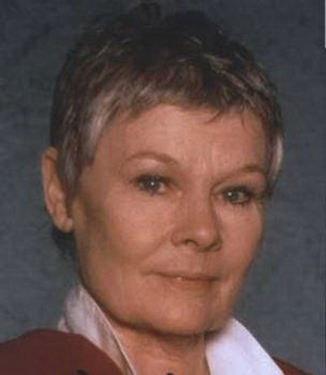 dench hairstyle instructions photo judi dench hairstyle instructions