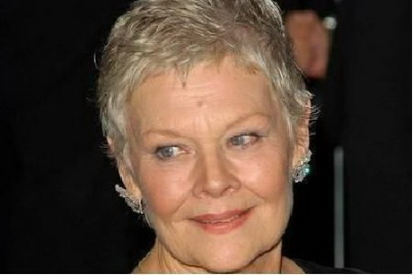 Judi Dench Hair Style Pictures to pin on Pinterest