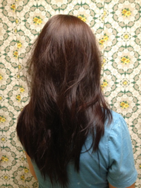 Long Layered Haircuts Back Viewlong Straight Layered Hair Back View