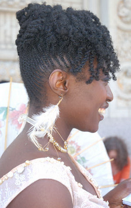 Natural Hairstyles Braids