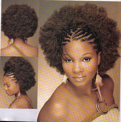 natural hairstyles with braids best natural hairstyles ideas