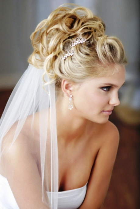 Bridal Hairstyle With Veil :