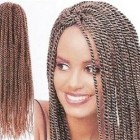 Twist braids hairstyles