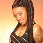 Twists braids hairstyles