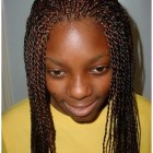 Micro twist braids hairstyles