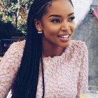 Long braids hairstyles 2019